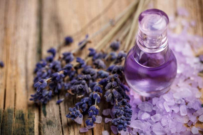 Whether your favorite fragrance is out of stock or you just want to try mixing your own perfume, we'll show you how to make your own roll-on perfume!