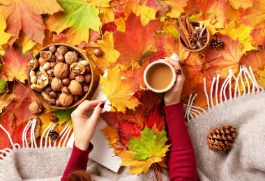 Celebrate the change in season with these autumn craft and activity books to liven up your home and bring a little warmth to your gatherings!