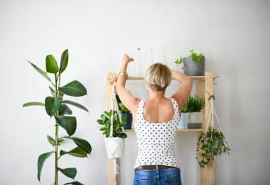 Want to start a garden but don't have the time to manage lots of outdoor plants? Check out our resources and info on indoor gardening supplies!